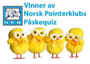 Vinner av Norsk Pointerklub's påskequiz