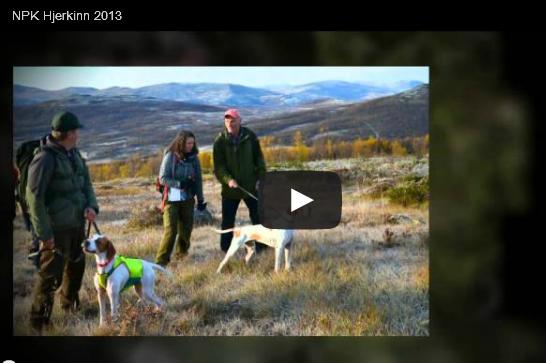 Video av Snorre Nicolaisen