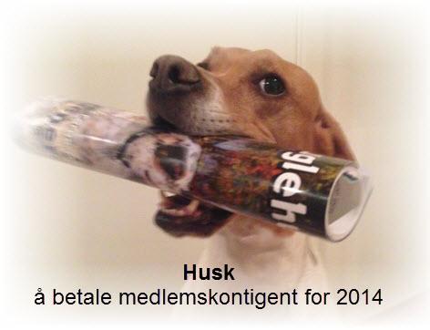 Husk medlemskontigenten 2014