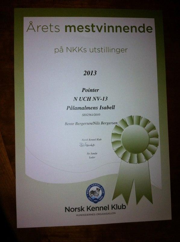 NKK Mestvinnende 2013