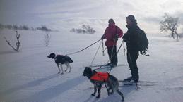 Rikke og Per-Ola. Foto: Agder Fuglehundklubb