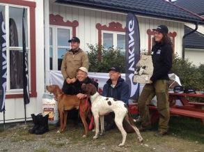 Vinner NPK Step Pokalen 2013