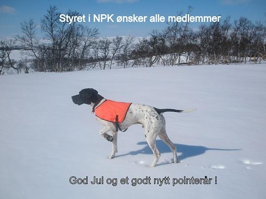 God Jul og Godt Nytt Pointerår ønskes alle medlemmer !!